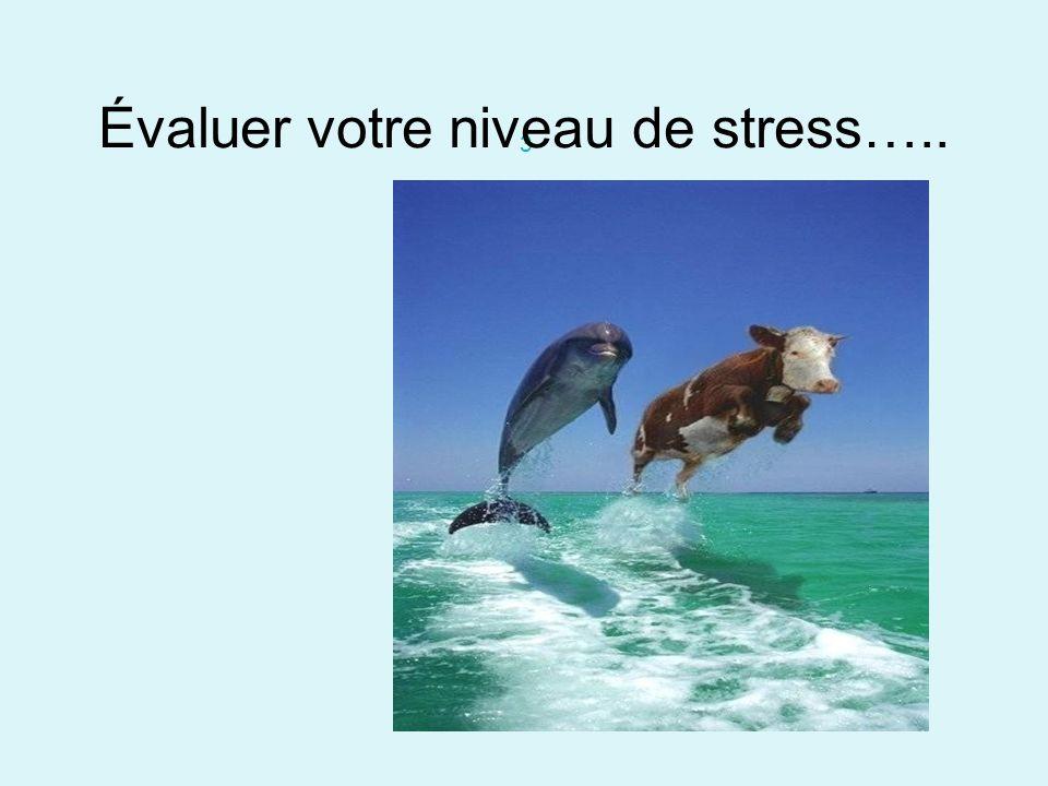 3 Évaluer votre niveau de stress…..
