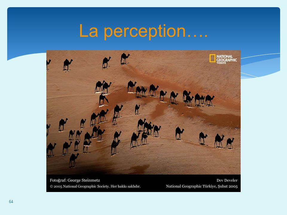64 La perception….