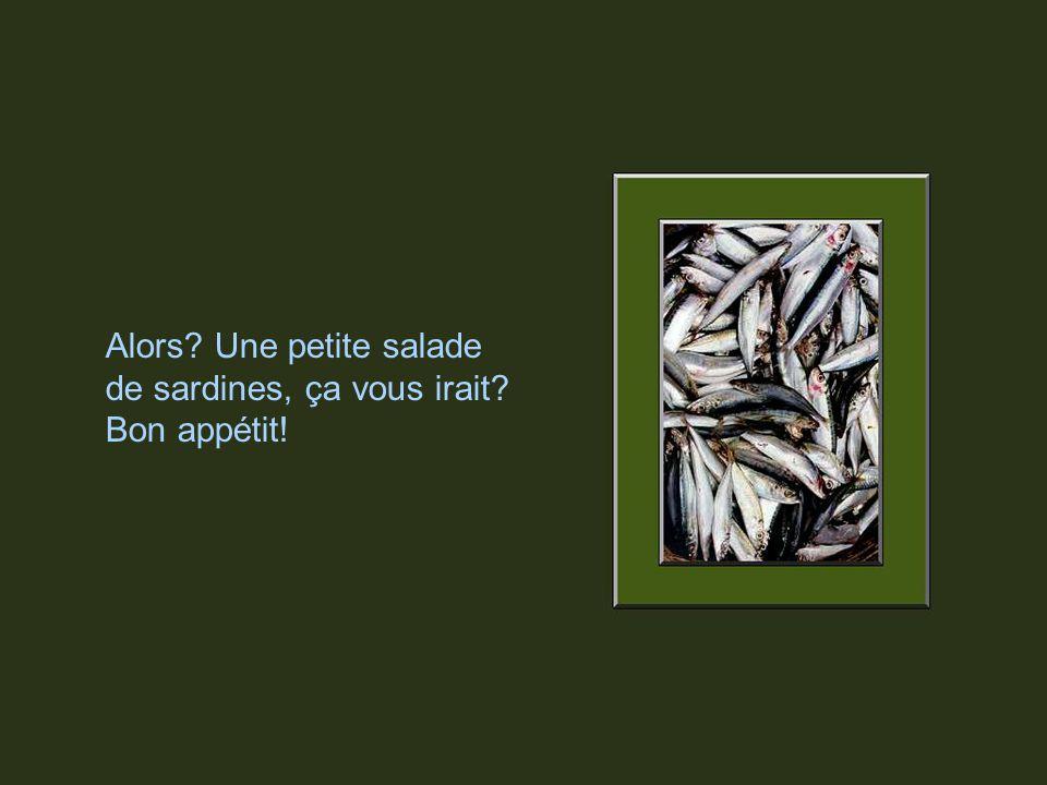 La France est le plus grand producteur de sardines en conserve au monde, suivie par la Norvège, le Portugal, lEspagne et le Canada au 5ième rang. Le M