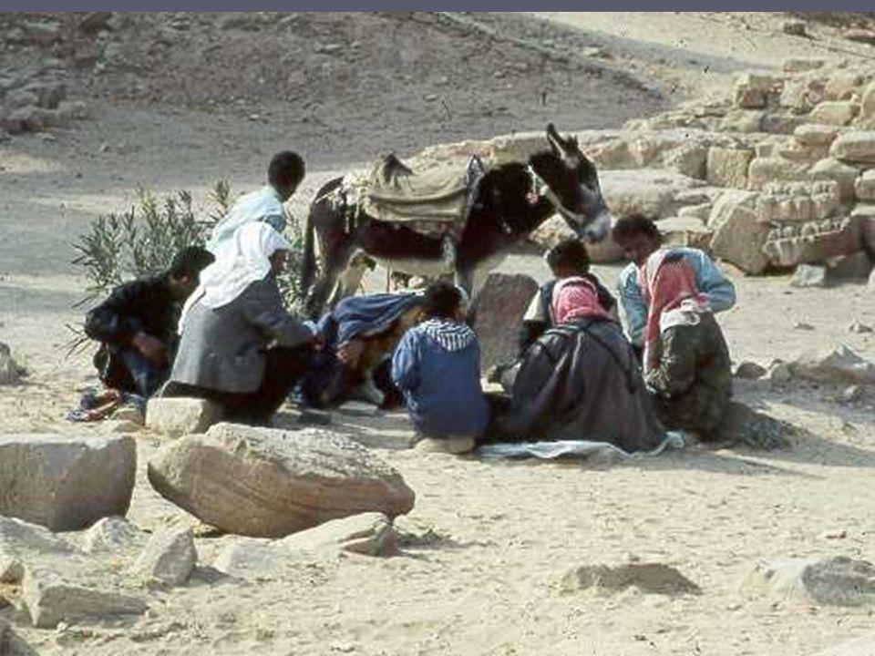Les conducteurs d ânes jouent en bas à un jeu sans doute ancien avec de petits cailloux sur le sable ancien avec de petits cailloux sur le sable