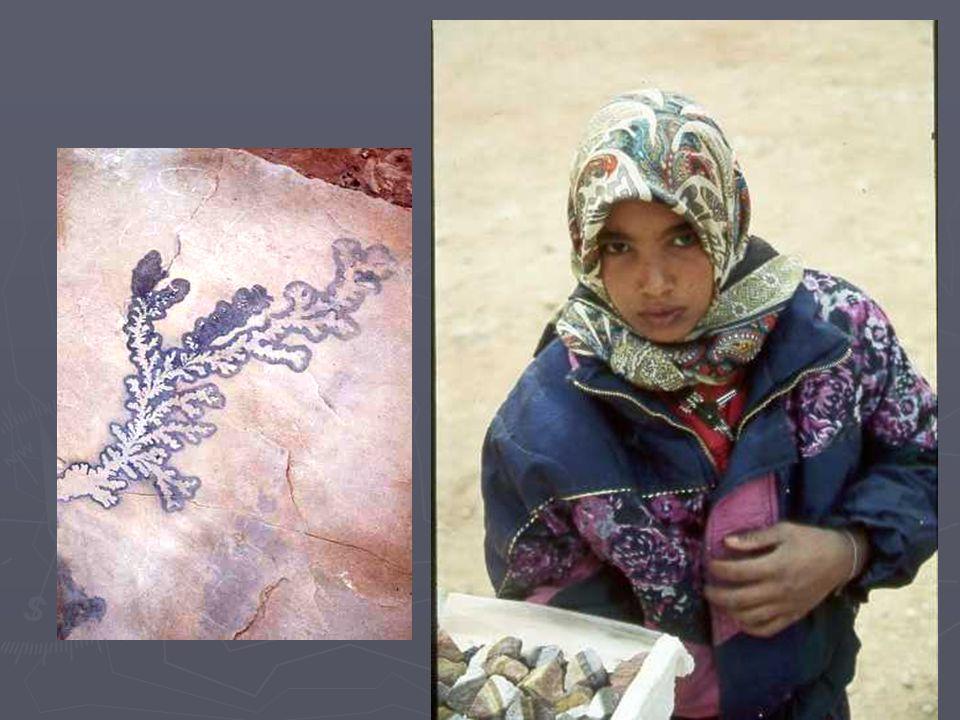 Sur la muraille incertaine,en contrebas, nous avons rencontré de jeunes bédouines rieuses, dont une enceinte était dispensée de ramadan, nous dit-elle