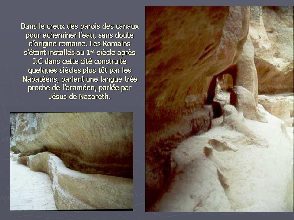 D'autant qu'il faut s'arrêter pour regarder les blocs des djinns (esprits en arabe) et les tombeaux, puis, tout le long de la paroi rocheuse, des nich