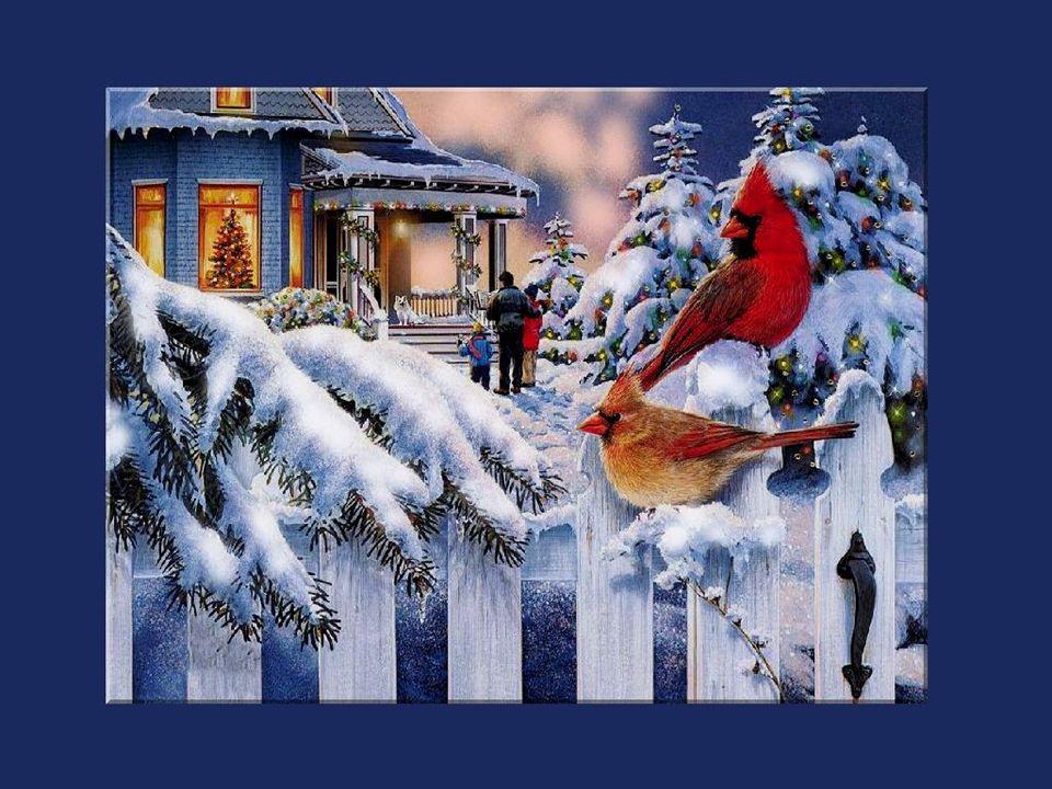 Jaime à me souvenir de ces doux Noëls dautrefois, à la maison, où la visite inattendue de loncle Henri et de ses deux gamins turbulents était plus importante que tous les feuilletons insipides de la télévision ou la partie hebdomadaire de quilles dans un sous-sol enfumé du centre commercial...