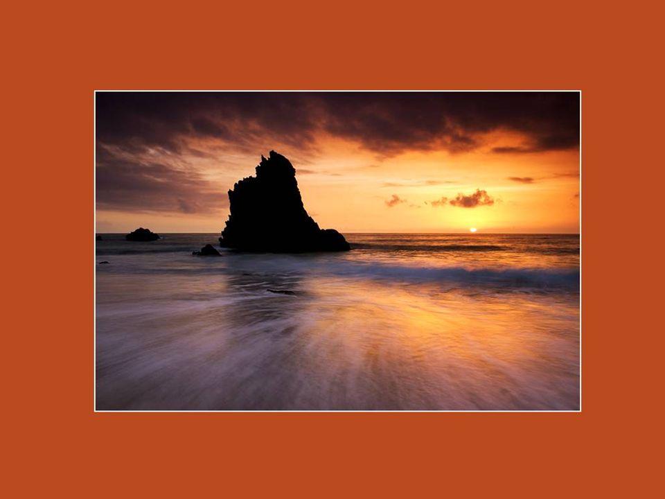Si tu ramasses un coquillage et que tu le portes à ton oreille, tu entendras la mer. Mais si tu le portes à ta poitrine, le coquillage entendra ton co