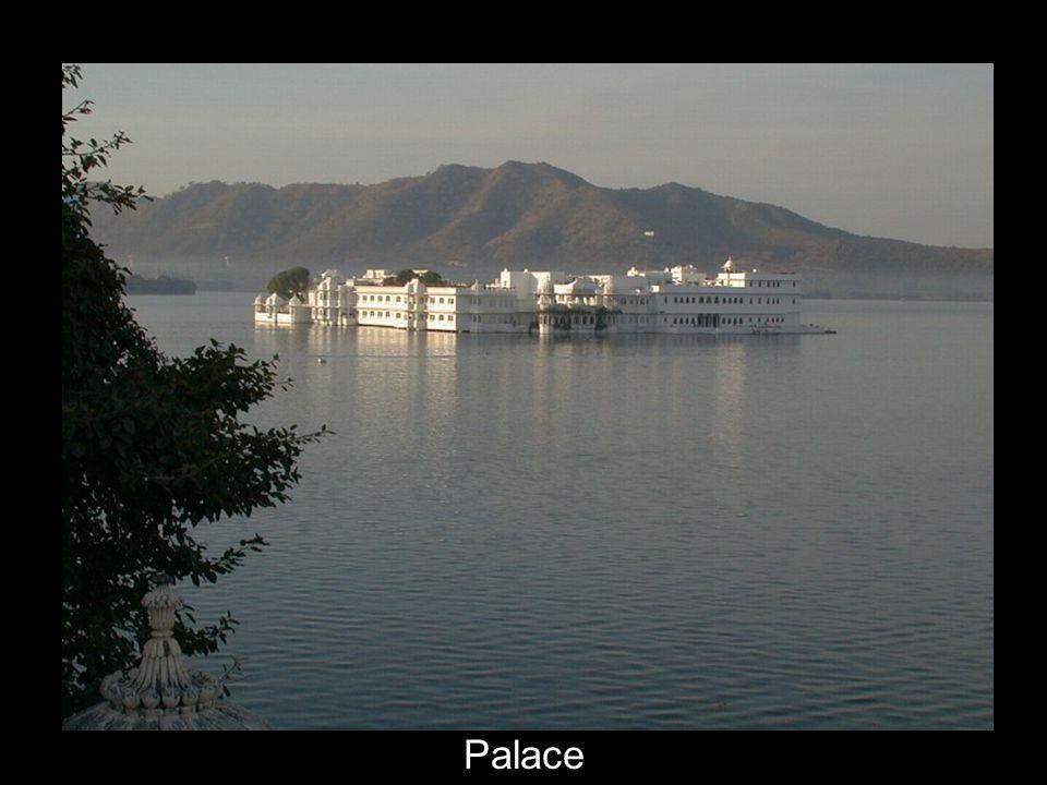 9 Palace