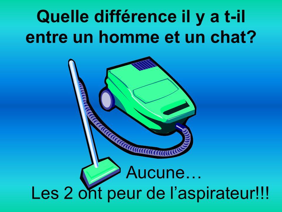 Quelle différence il y a t-il entre un homme et un chat? Aucune… Les 2 ont peur de laspirateur!!!
