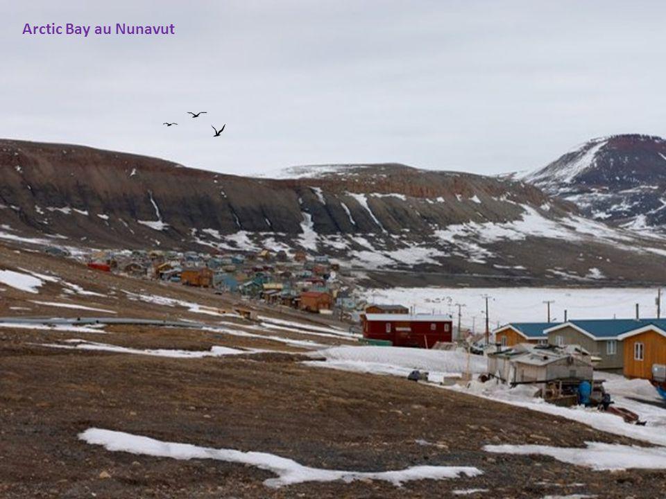La cathédrale en igloo dIqaluit