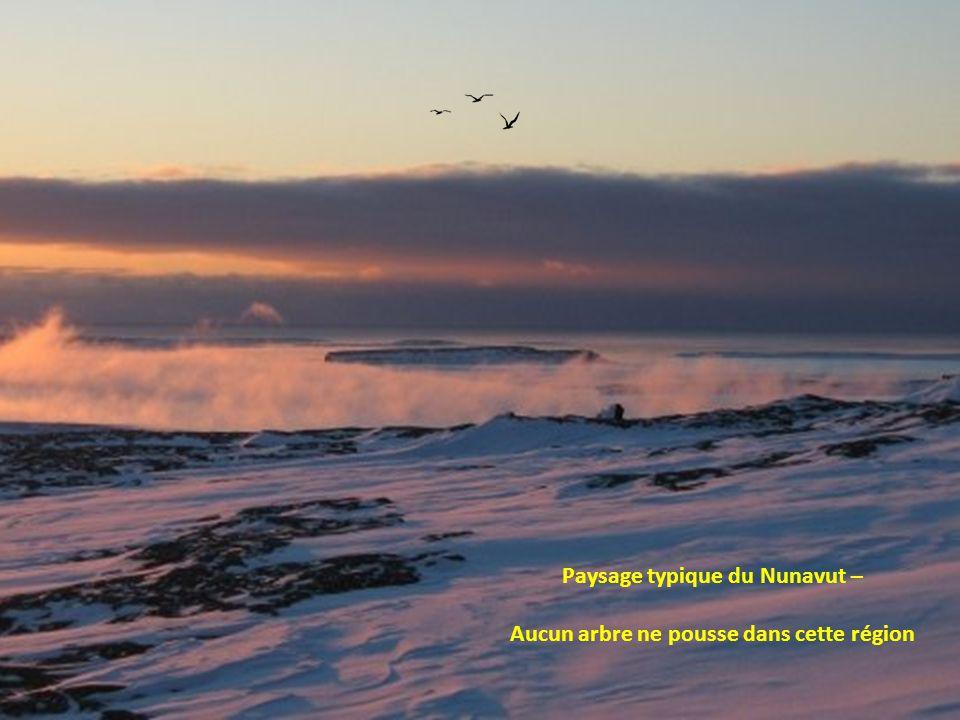 Arctic Bay au Nunavut