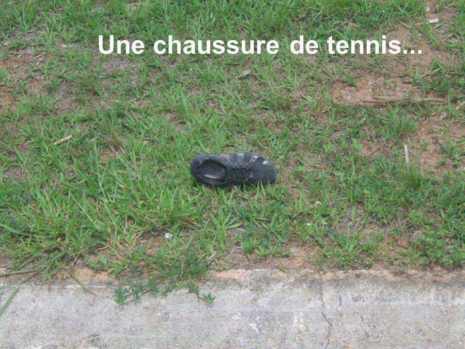 Une chaussure de tennis...