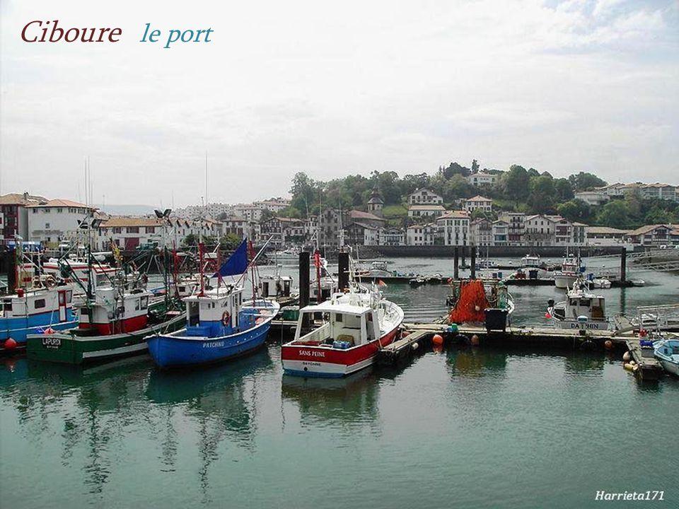 Ciboure léglise Saint-Vincent