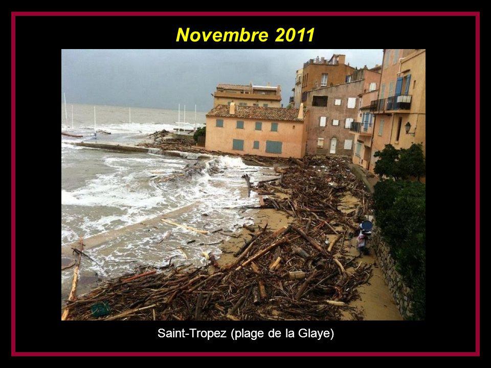 Novembre 2011 Ramatuelle (plage de Pampelonne)
