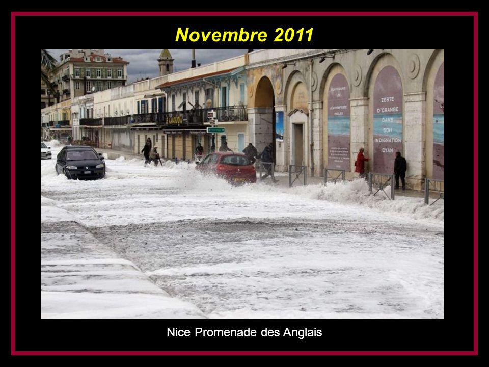 Novembre 2011 Saint-Tropez (plage de la Glaye)