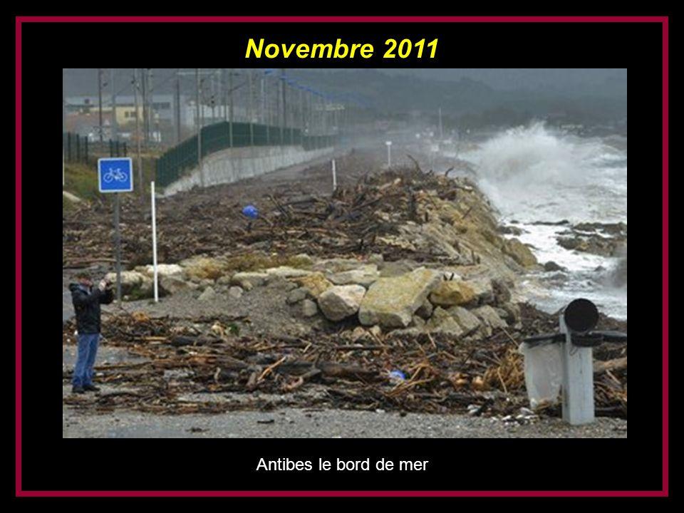 Novembre 2011 Nice Promenade des Anglais (devant le Negresco)