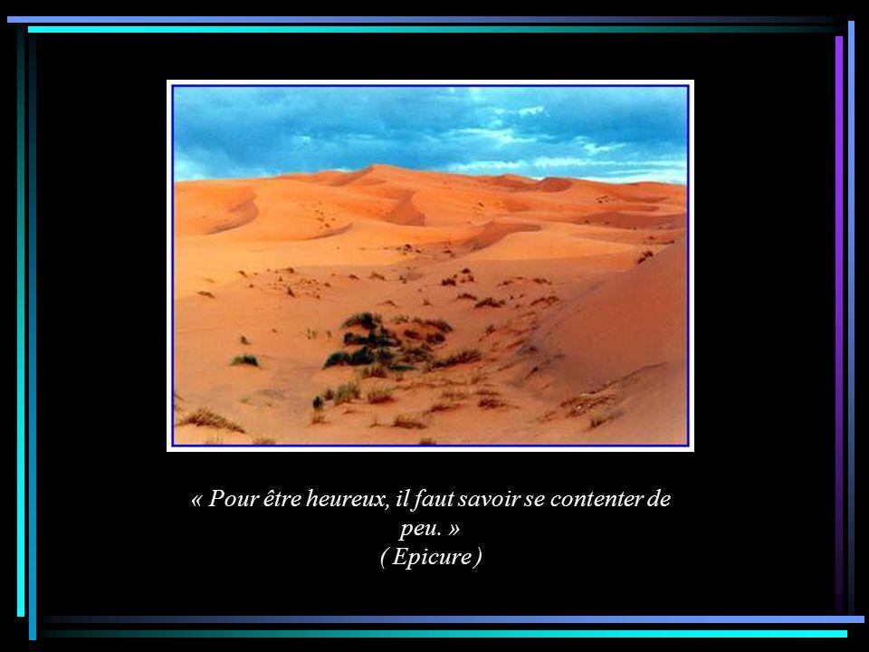 « Toutes les grandeurs de ce monde ne valent pas un bon ami. » ( Voltaire )