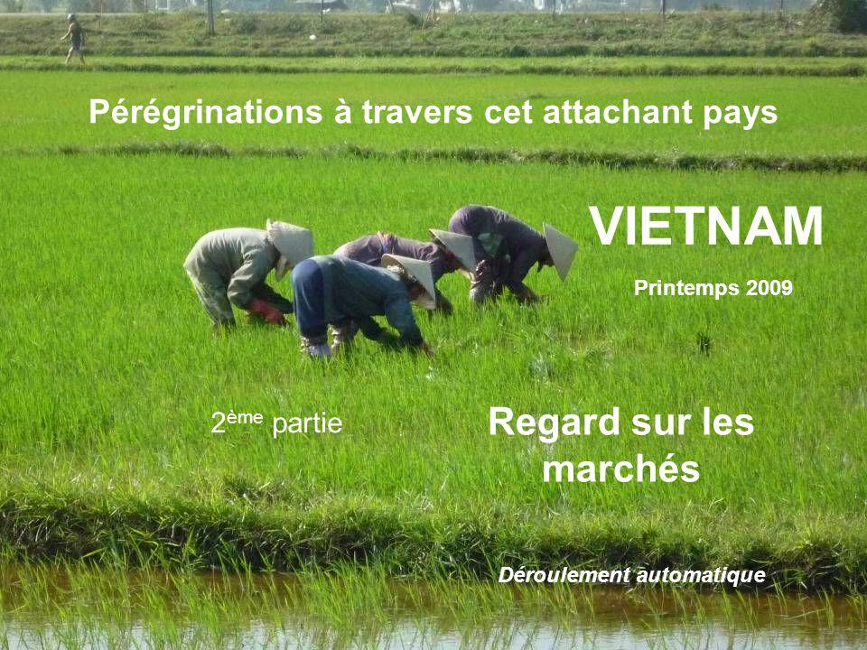 Pérégrinations à travers cet attachant pays VIETNAM Printemps 2009 2 ème partie Regard sur les marchés Déroulement automatique