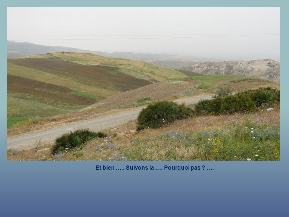 La route qui mène Vers le Mont Bonnier. Mont bonnier