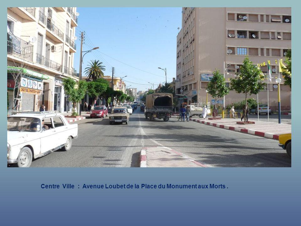 Centre Ville : Avenue Loubet de la Place du Monument aux Morts.