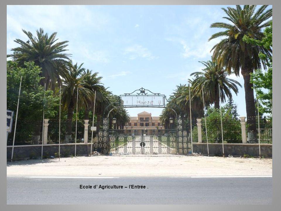 Ecole d agriculture