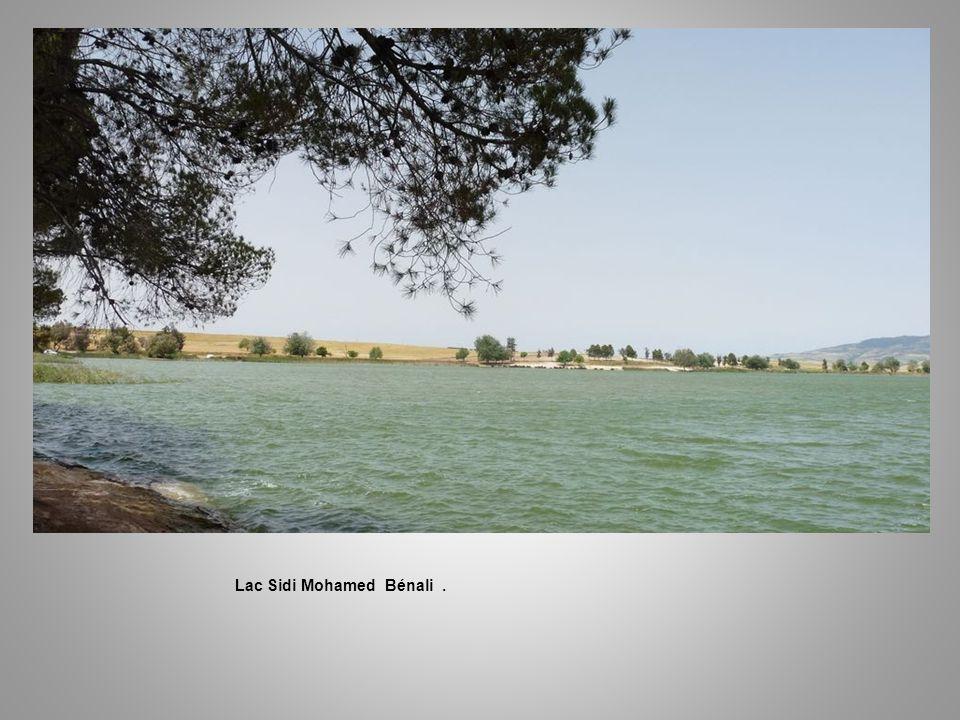 Lac Sidi Mohamed Bénali. Annie et François sur les rives du Lac.