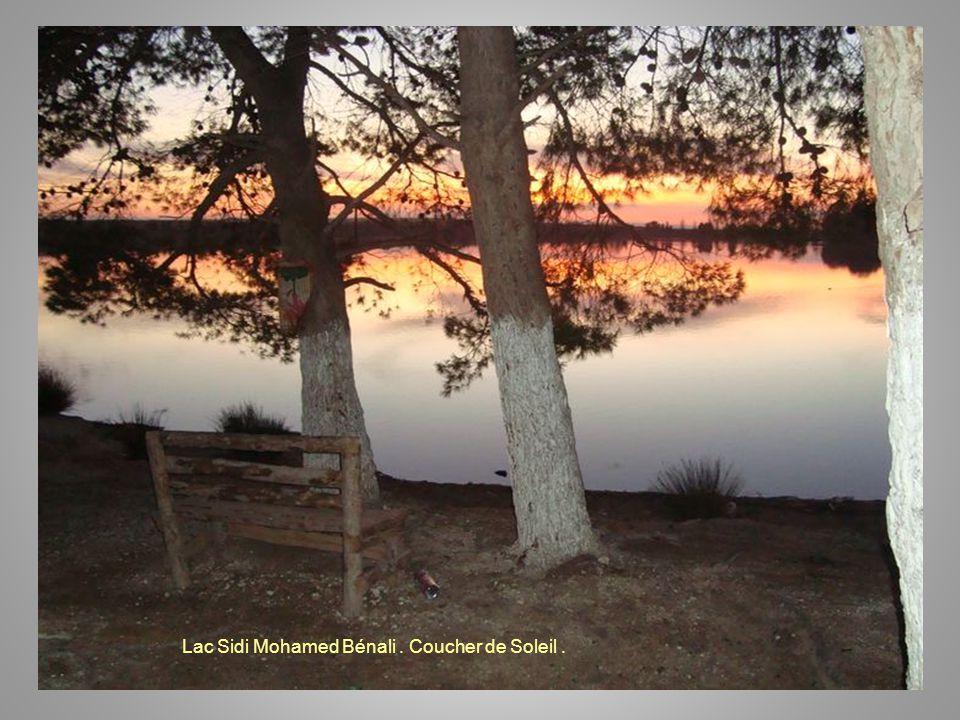 Lac Sidi Mohamed Bénali. Coucher de Soleil.