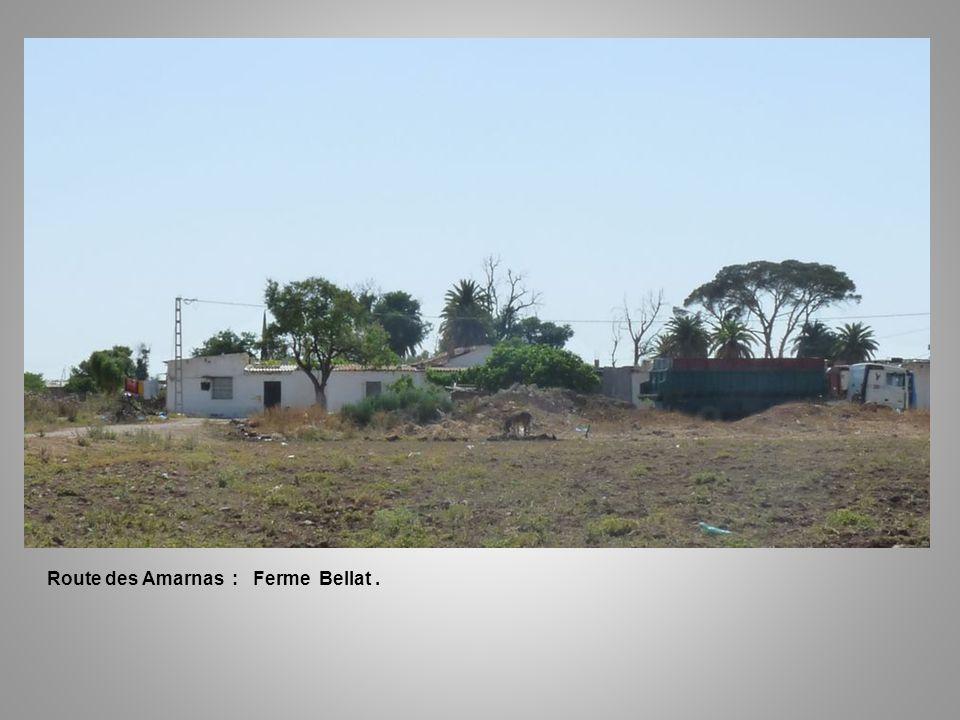 Route des Amarnas : Ferme Bellat.