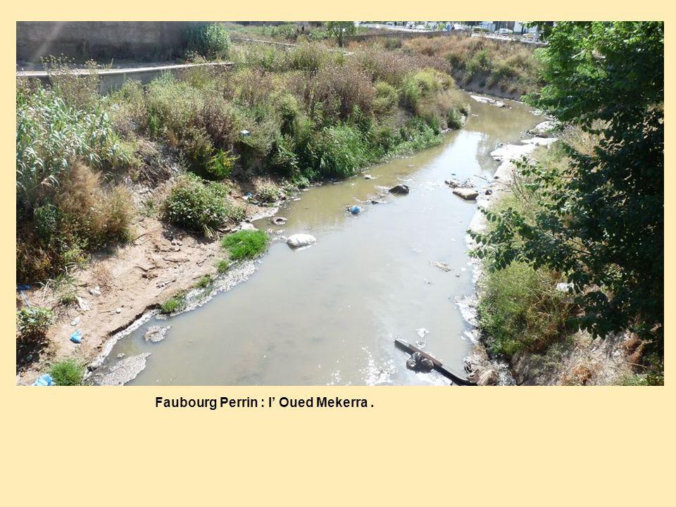 Faubourg Perrin : l Oued Mekerra.