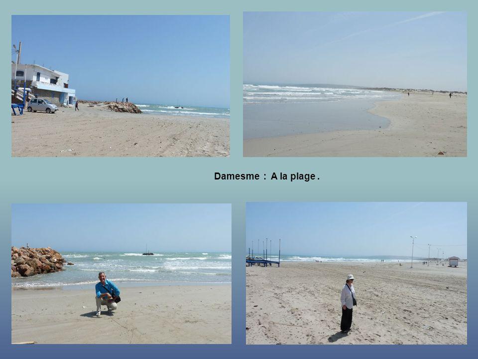Damesme : La plage.