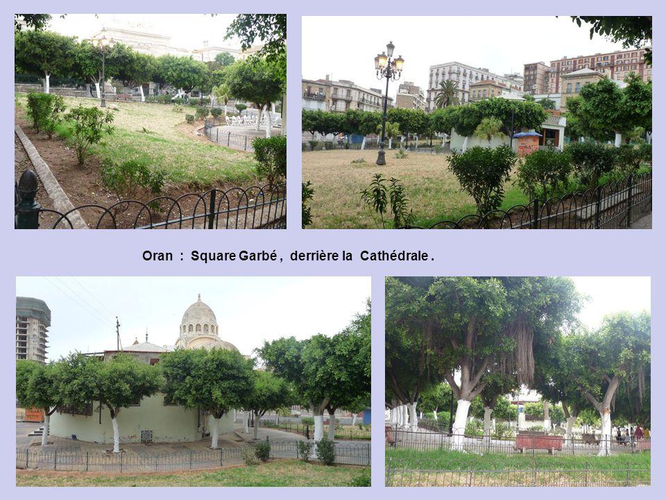 Oran : Square Garbé, derrière la Cathédrale.