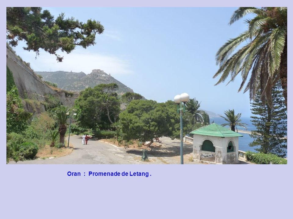 Oran : Promenade de Letang.