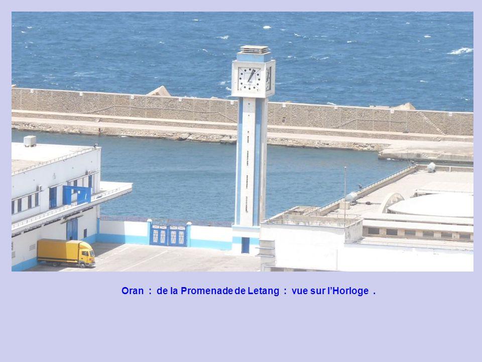 Oran : de la Promenade de Letang : vue sur la Mer.