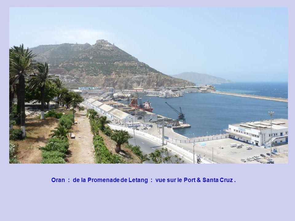 Oran : de la Promenade de Letang : vue sur la ville.