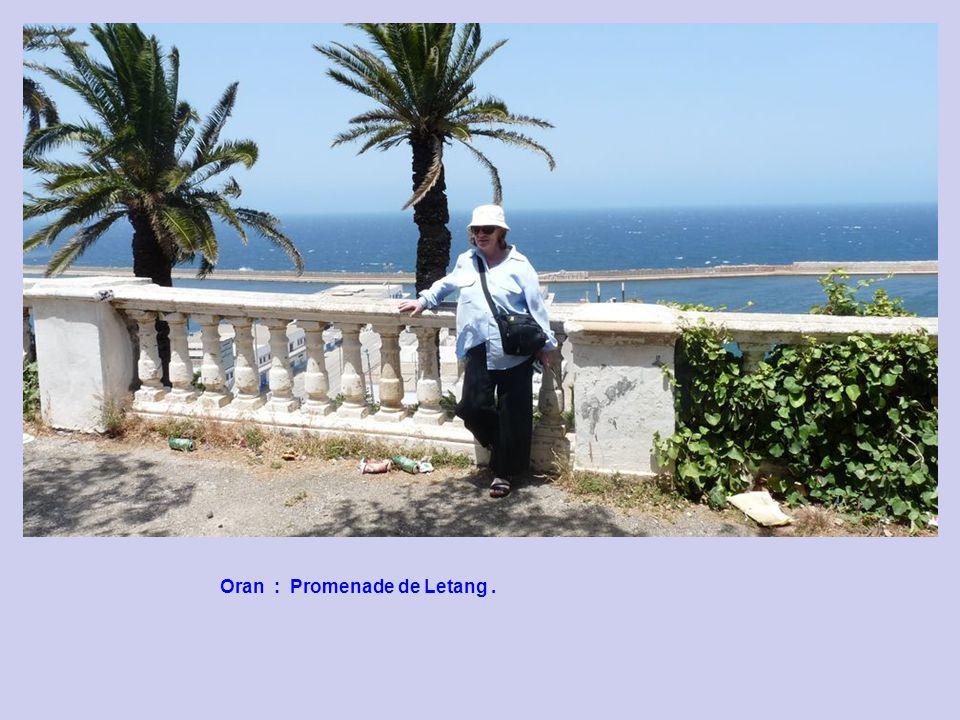 Oran : Promenade de Letang : pose dune nouvelle Statue !!!.
