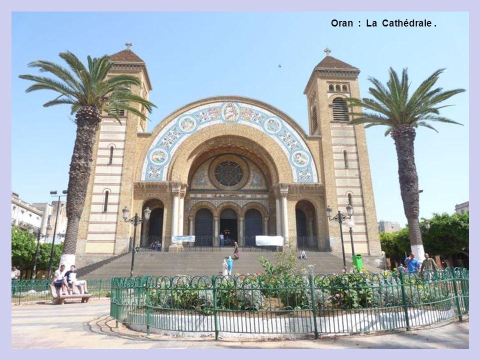 Oran : 2 ère Partie Cathédrale : Transformée en Bibliothèque.