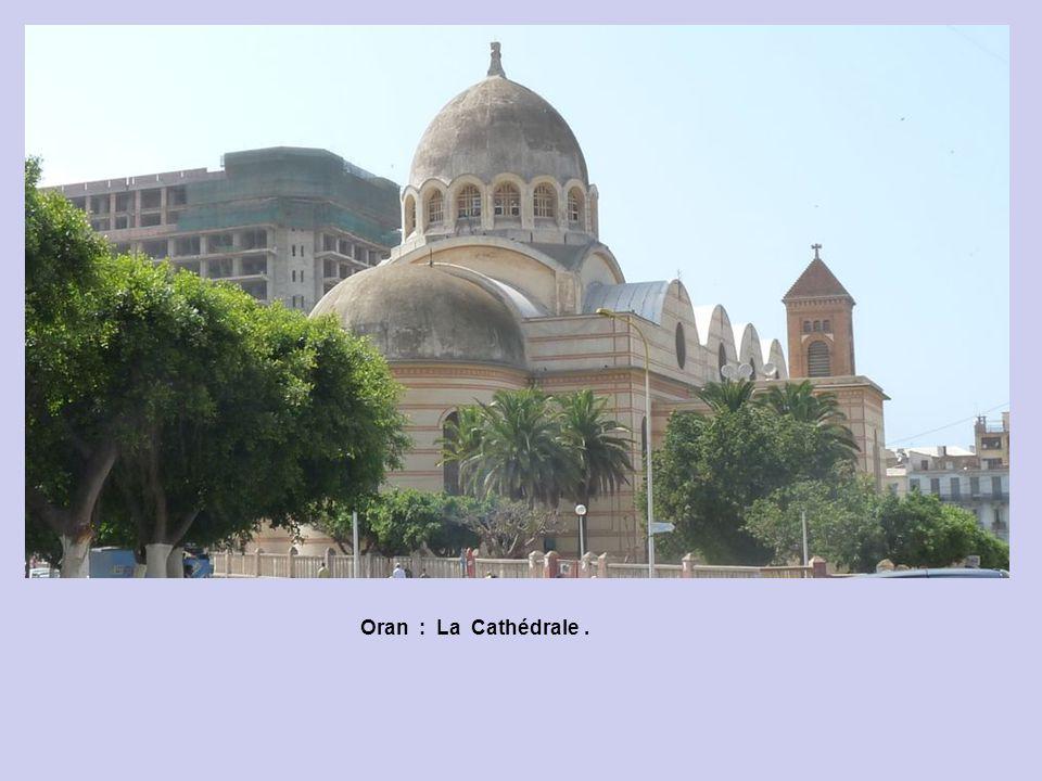 Oran : La Cathédrale et Statue du Square Garbé.