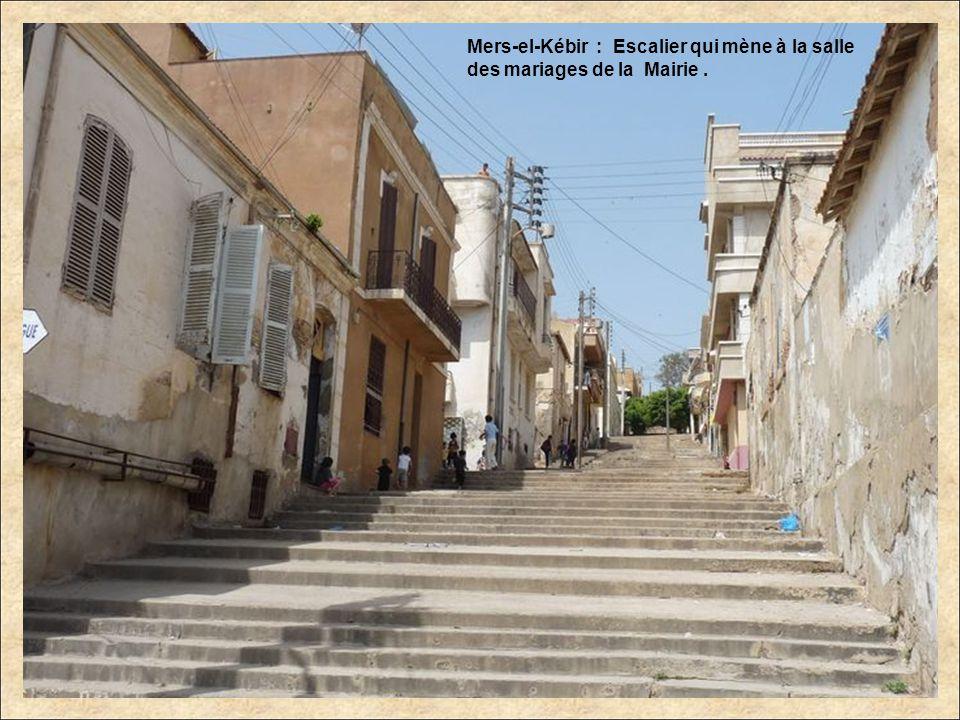 Mers-el-Kébir : La Mairie. Annie, dans la salle où elle sest mariée.