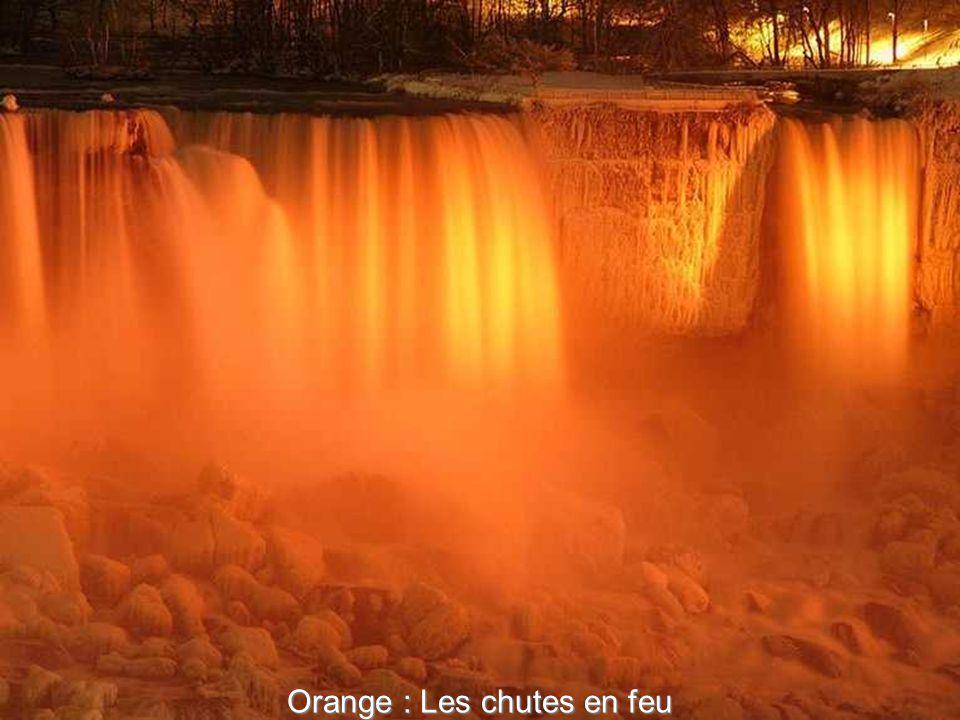 Bleu : Le «festival spectaculaire d hiver des lumières» fonctionne à partir de fin novembre à début janvier