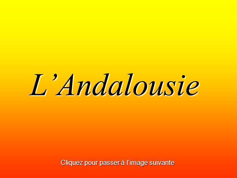 LAndalousie Cliquez pour passer à limage suivante