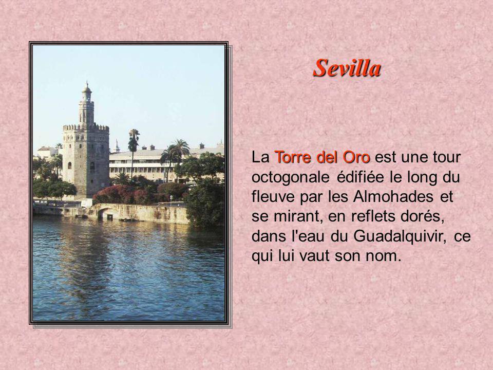 Guadalquivir Même située à 115 km de la mer, Séville a longtemps été une ville portuaire importante. Bien placée sur le Guadalquivir, la vieille ville