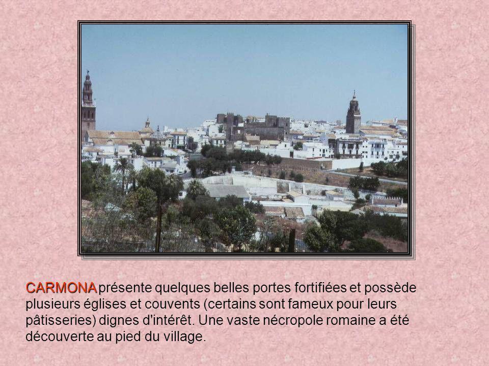 CARMONA CARMONA, à 30 km au nord-est de Séville, se dresse au sommet d'un promontoire. Elle fut d'abord une cité romaine, puis wisigothe et maure, ava