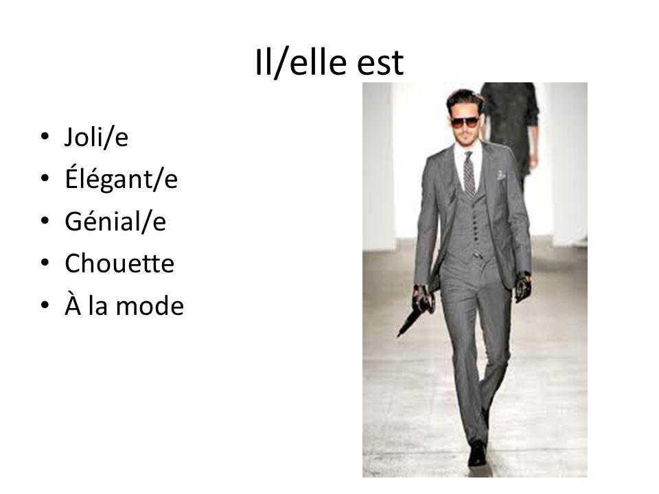 Il/elle est Joli/e Élégant/e Génial/e Chouette À la mode