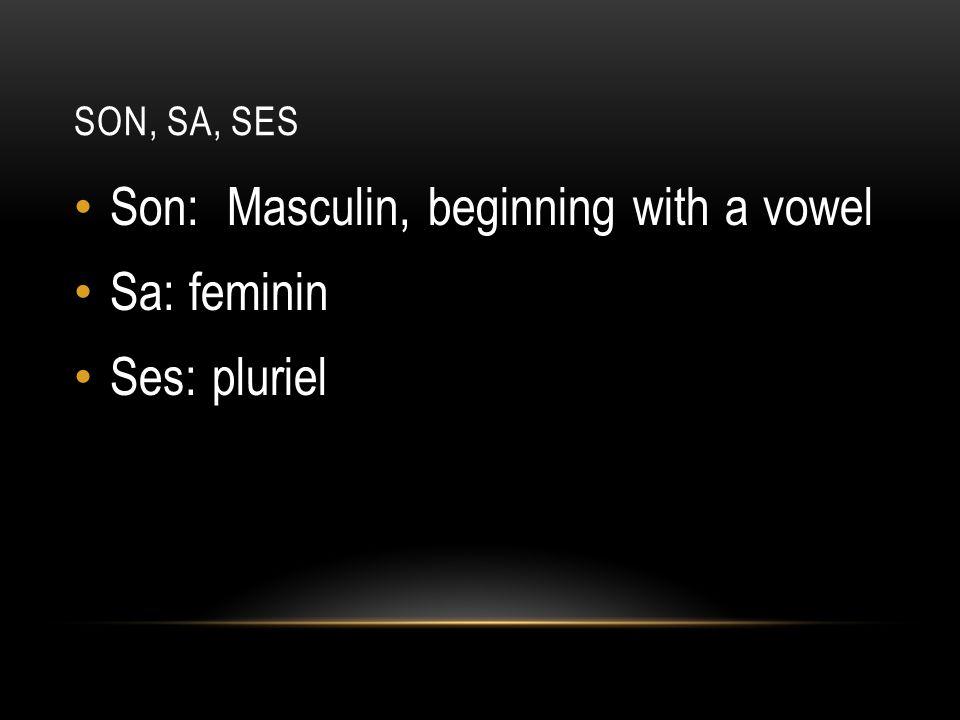 SON, SA, SES Son: Masculin, beginning with a vowel Sa: feminin Ses: pluriel