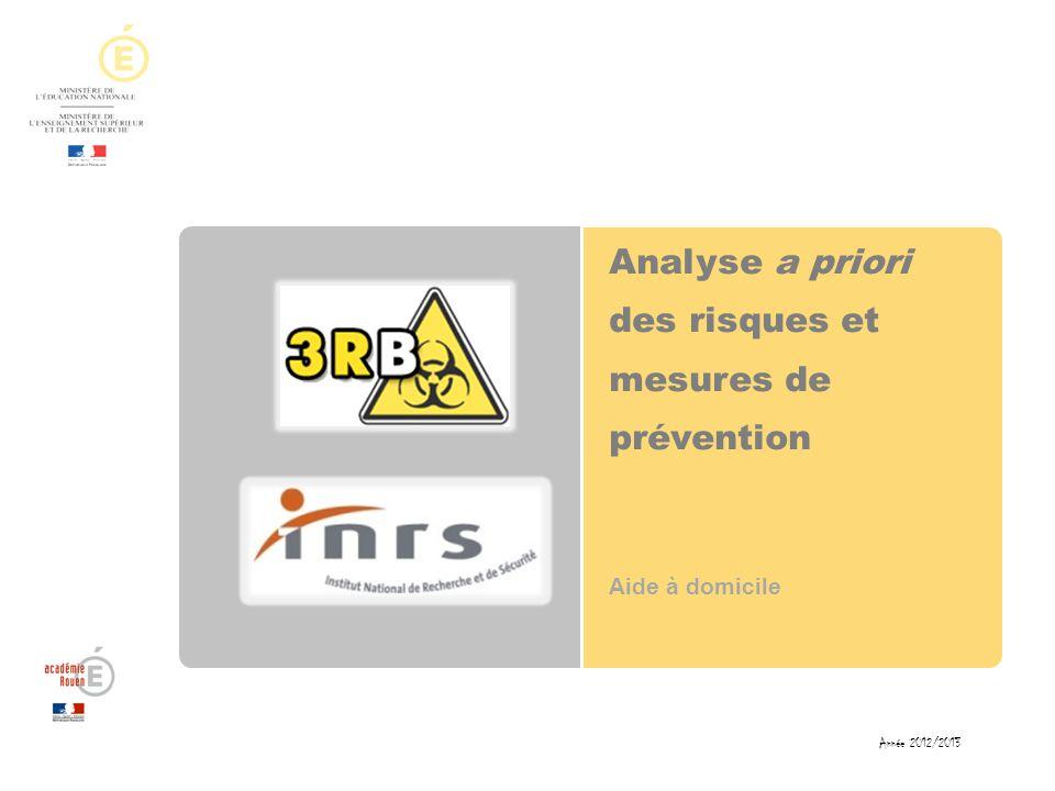 Analyse a priori des risques et mesures de prévention Aide à domicile Année 2012/2013