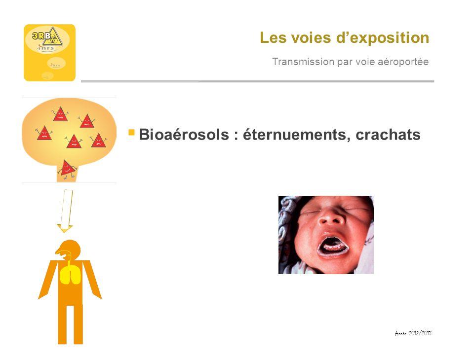 Les voies dexposition Transmission par voie orodigestive Mains ou objets contaminés portés à la bouche Année 2012/2013