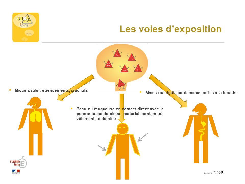 Les mesures de prévention Agir sur le réservoir : non Prévention collective : non Prévention individuelle : porter des appareils de protection respiratoire Année 2012/2013