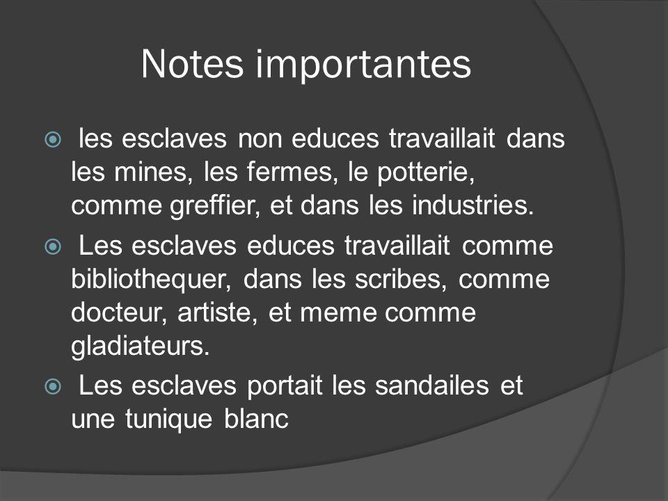 Notes importantes les esclaves non educes travaillait dans les mines, les fermes, le potterie, comme greffier, et dans les industries.