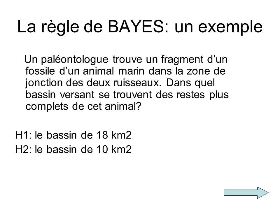 La règle de BAYES: un exemple Un paléontologue trouve un fragment dun fossile dun animal marin dans la zone de jonction des deux ruisseaux. Dans quel