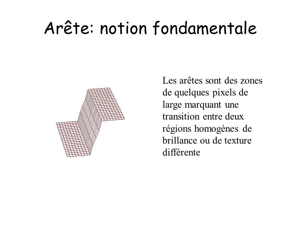 Arête: notion fondamentale Les arêtes sont des zones de quelques pixels de large marquant une transition entre deux régions homogènes de brillance ou de texture différente
