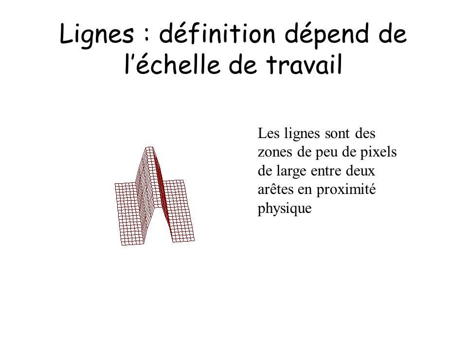 Lignes : définition dépend de léchelle de travail Les lignes sont des zones de peu de pixels de large entre deux arêtes en proximité physique