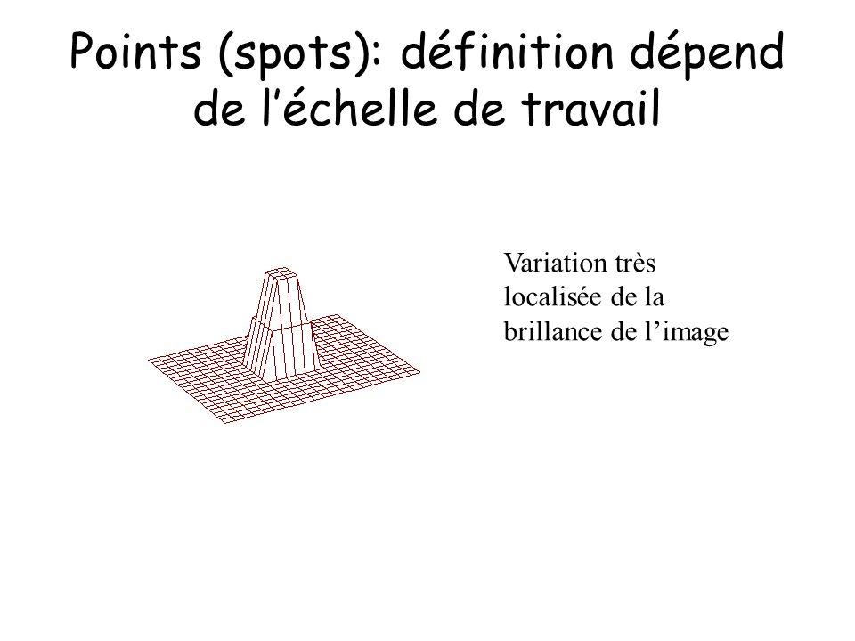 Points (spots): définition dépend de léchelle de travail Variation très localisée de la brillance de limage