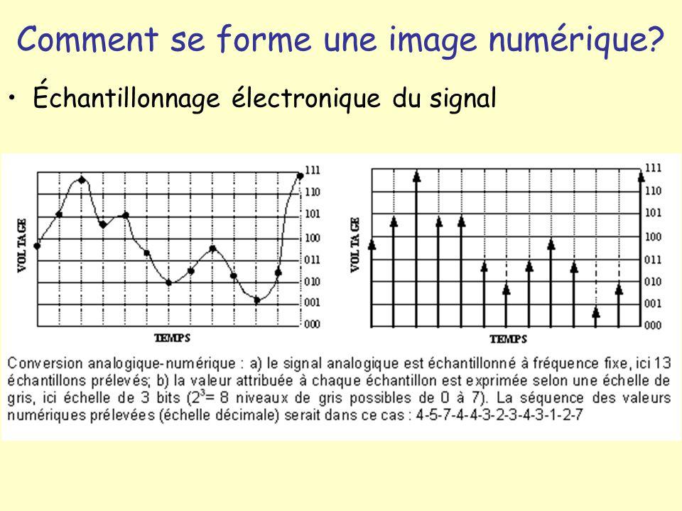 Comment se forme une image numérique? Échantillonnage électronique du signal